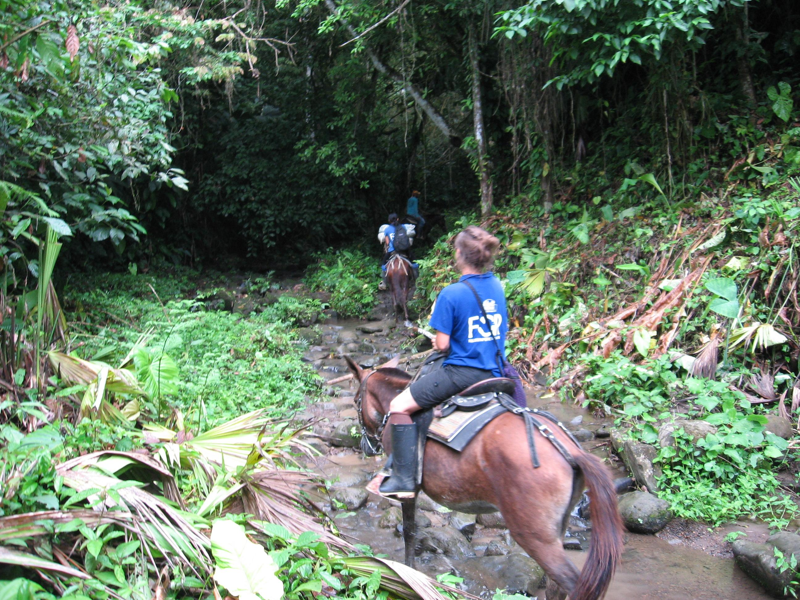 Friedensgemeinde, Kolumbien. Auf dem Weg zu abgelegenen Dörfern